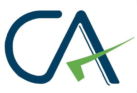 indian chartered accountants get a new logo
