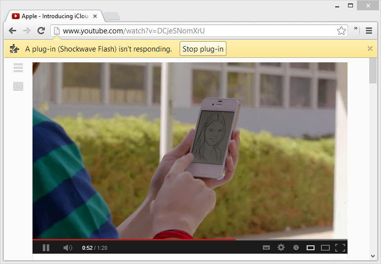 Shockwave Flash in Google Chrome