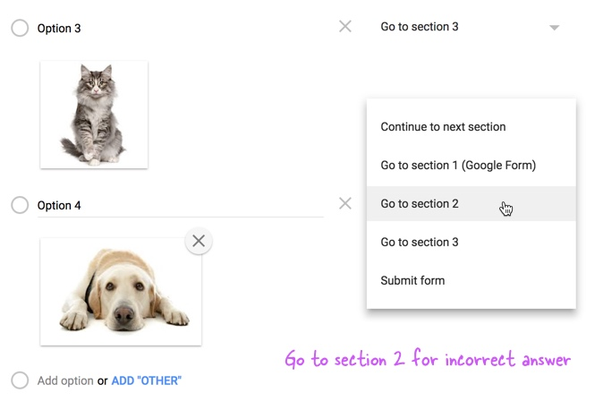 How to add picture passwords in your google forms image captchas also turn on the option go to section based on answer for the section so that only valid answers are taken to the main form ccuart Gallery